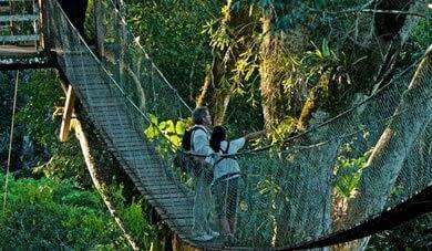 Amazonian Peru, Tourist Program